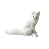 Aidi the Arctic Fox