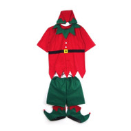 5pc Adult Summer Elf Costume