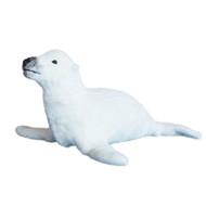Vicky's Mamma Sea Lion