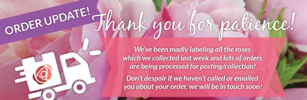 Order Update Info