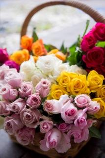 813-cut-roses.jpeg