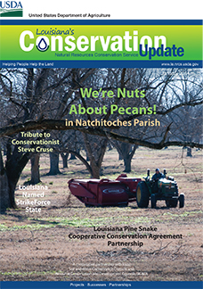 Louisiana Conservation Magazine - Jan 2014 - Natchitoches Pecans Article