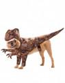 Raptor - Animal Planet