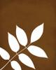 Ash leaf art print