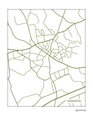 Lexington, South Carolina city map