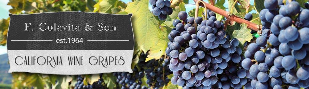 copy-colavita-ca-wine-grapes-header.jpg