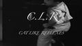 CLR by Dan Hauss video DOWNLOAD