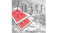 Zinger by Rian Lehman video DOWNLOAD