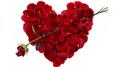 Valentine by Dynamite - video DOWNLOAD