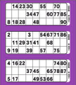 3View Bingo Paper Purple