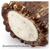 Mountain Medallions... Not just another elk antler burr, for sure!
