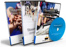 Teamwork Quotes I, II and III. Inspirational Quotes and Questions DVDs.