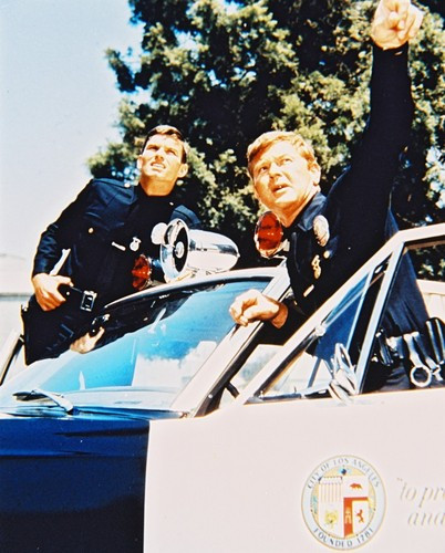 Picture of Adam-12