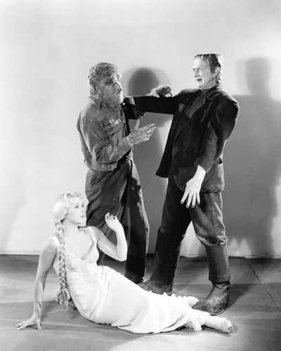 Picture of Frankenstein Meets the Wolf Man