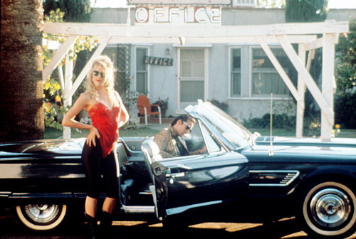 Picture of Wild at Heart