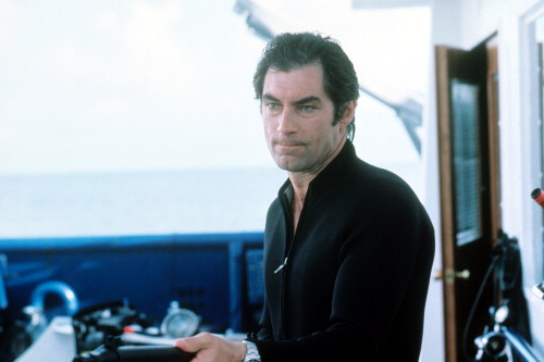 Picture of Timothy Dalton