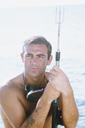 Picture of Thunderball
