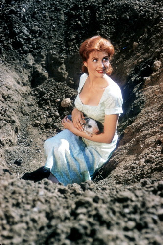 Picture of Tina Louise in God's Little Acre