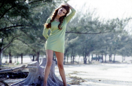 Picture of Raquel Welch