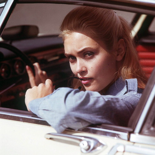 Picture of Alexandra Bastedo in The Champions