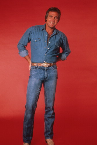 Picture of Lee Majors in The Fall Guy