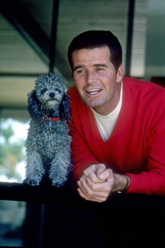 Picture of James Garner