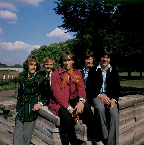 Picture of The Bee Gees