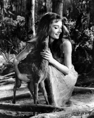 Picture of Audrey Hepburn in Green Mansions