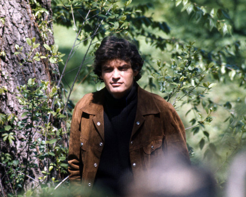 Picture of David Selby in Dark Shadows