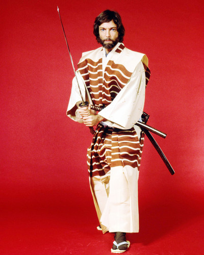 Picture of Richard Chamberlain in Shogun