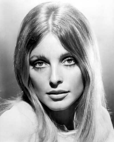 Picture of Sharon Tate