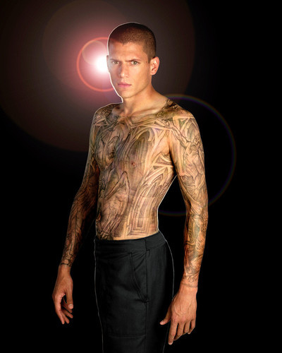 Picture of Wentworth Miller