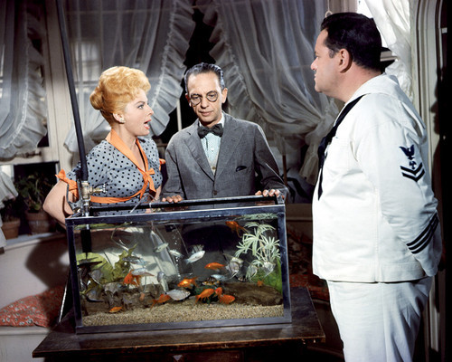 Picture of Don Knotts in The Incredible Mr. Limpet