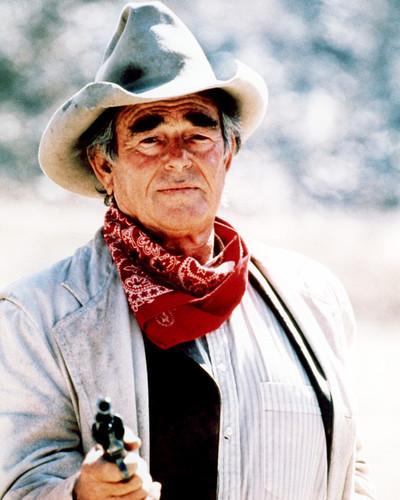 Picture of Stuart Whitman