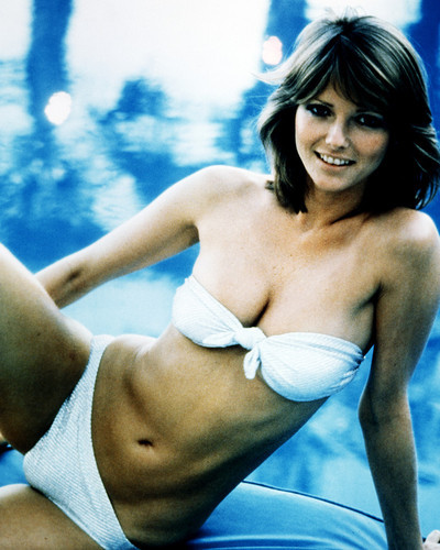 Picture of Cheryl Tiegs