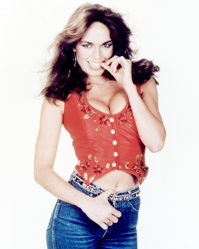 Picture of Catherine Bach in The Dukes of Hazzard