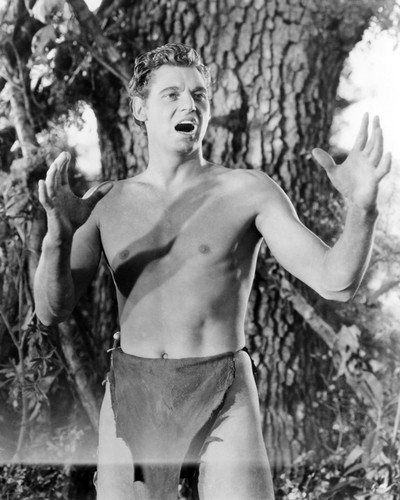 Picture of Johnny Weissmuller in Tarzan and His Mate