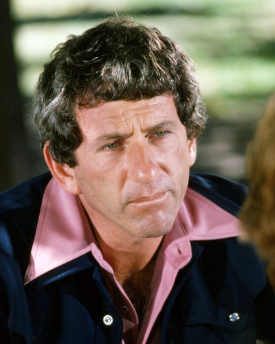 Picture of Barry Newman in Petrocelli