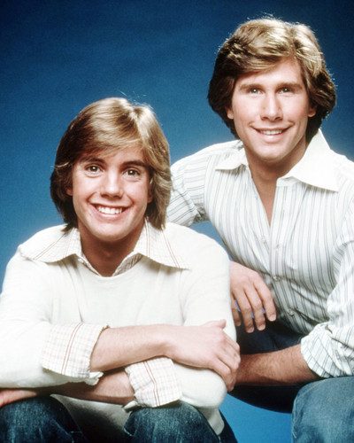 Picture of The Hardy Boys
