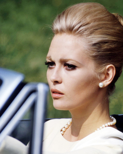 Picture of Faye Dunaway in The Thomas Crown Affair