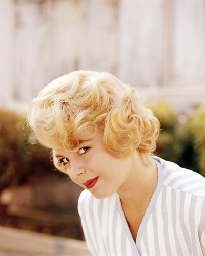 Picture of Sandra Dee