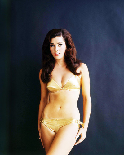 Picture of Edy Williams