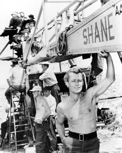 Picture of Alan Ladd in Shane