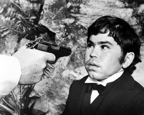Picture of Hervé Villechaize