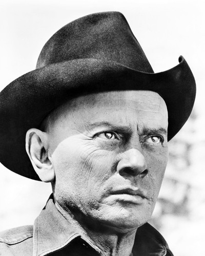 Picture of Yul Brynner in Westworld
