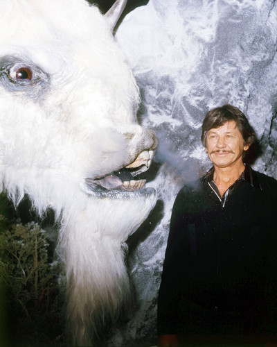 Picture of Charles Bronson in The White Buffalo