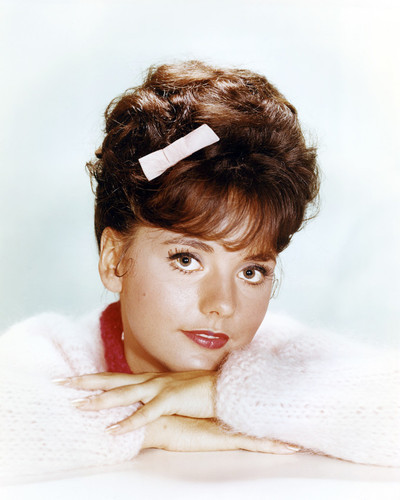 Picture of Dawn Wells