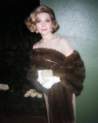 Picture of Barbara Bain