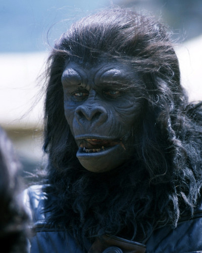 Picture of Planet of the Apes