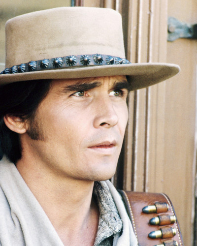 Picture of James Brolin in Westworld
